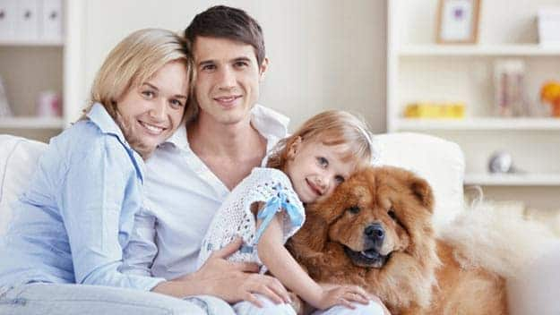 Wills & Trusts dog-young-family Direct Wills Dorchester